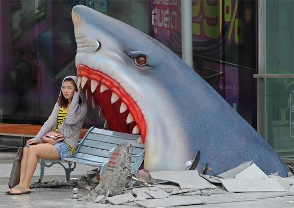 shark-bench-1