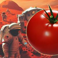 pomidor_mars_one_webapteka
