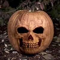 1225394376_21764917_wallpaper__halloween_pumpkin_by_noko