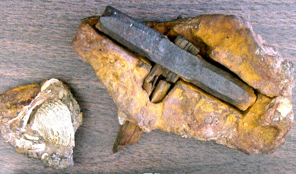 Археологические находки не вписывающиеся в историю.