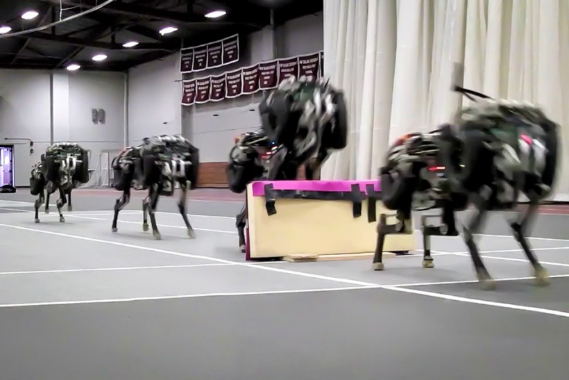 MIT Jumping Cheetah