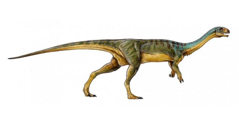 chilesaurus-dinosaurio-1