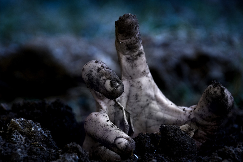virtoofoto-zombi