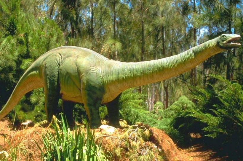 1920x1440-cute-dinosaur-wallpaper